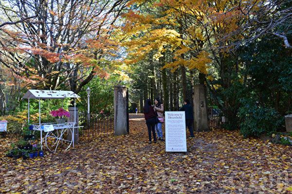Breenhold花園門口有一小花車,上面寫著成人8元,小孩2元,均是自願將門票錢放在一個匣子裡。(華苜/大紀元)