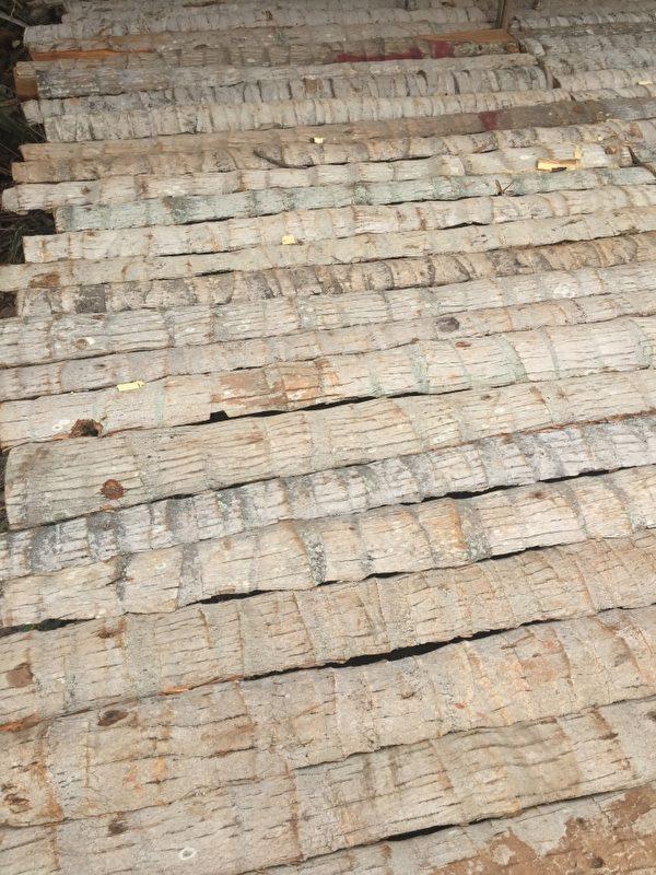 椰子树干也有多种用途。(图:信男国际贸易提供)