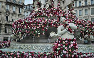 组图:法国里昂举办五月玫瑰花节