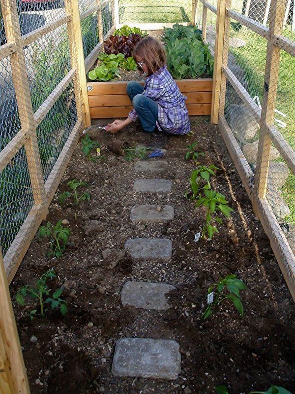 9岁女孩海莉还为流浪者种蔬菜,提供食物。(Facebook)