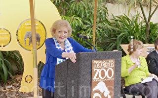 93岁传奇影星贝蒂·怀特为小动物筹款