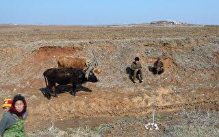 UN报告:干旱或导致朝鲜今年发生大饥荒