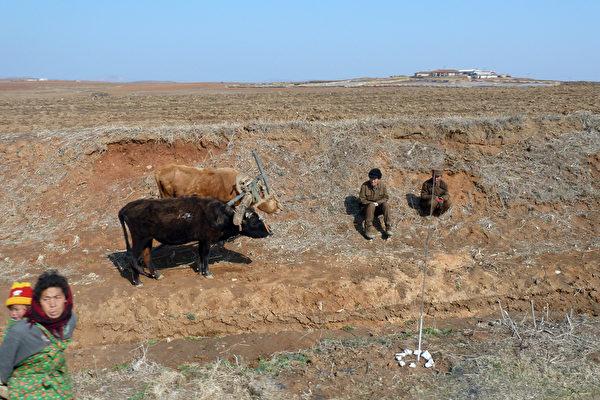 UN報告:乾旱或導致朝鮮今年發生大饑荒