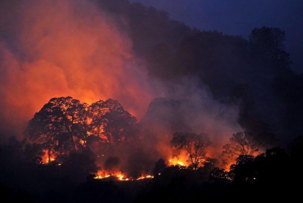 2015年7月23日,美国加州温特斯,当地山火仍在蔓延。树林和灌木丛燃烧,消防队员抢救中,加州的大火已绵延6000亩,但只有15%受到控制。(Josh Edelson/AFP/Getty Images)
