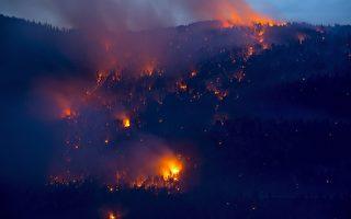 加西乾旱、野火、蝗蟲肆虐