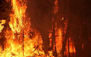 加州多處野火 但燃燒面積控制在較小範圍