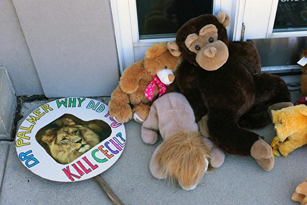 美國富牙醫在津巴布韋獵殺深受民眾喜愛的獅子王,民眾在巴默的辦公室外頭堆了一些填充娃娃。(Adam Bettcher/Getty Images)