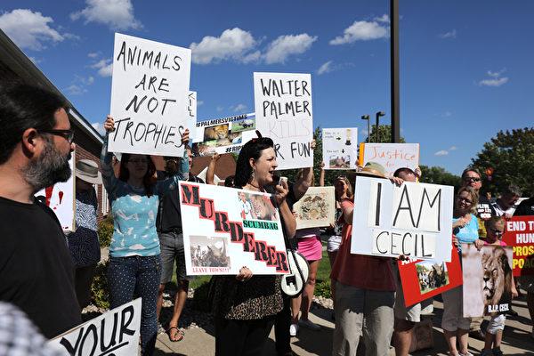 美國富牙醫在津巴布韋獵殺深受民眾喜愛的獅子王,民眾在診所外抗議。(Adam Bettcher/Getty Images)