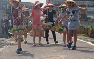 头份推动米食学园 学童体验插秧趣