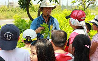 永安生態小旅行 認識養殖產業