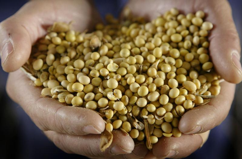 糧食危機?中共下令各省「糧產只增不減」