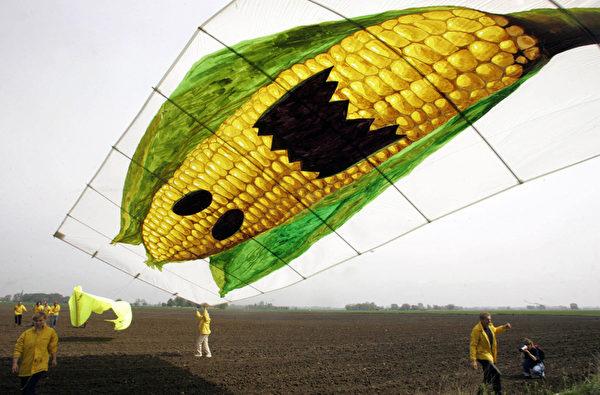 綠色和平組織成員在德國放飛大風箏,抗議德國種植孟山都的轉基因玉米。(MICHAEL KAPPELER/AFP/Getty Images)