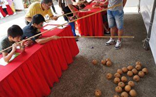 大湖栗林办文化祭 周末免费吃水梨