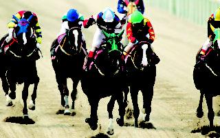 專為外國遊客打造 首爾賽馬場「冠軍包廂」