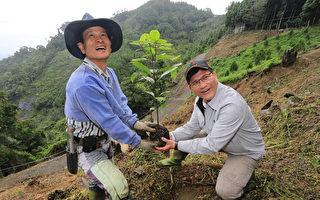学赖桑种树  林佳龙大雪山植牛樟