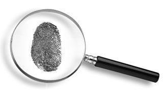 研究:看指纹能推测祖先信息