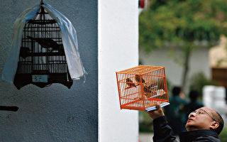 中共争取WTO市场经济地位 专家警告