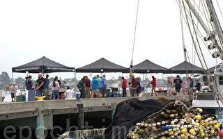 北加鱼市 25%鱼体内有塑料和纤维