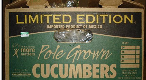 由圣地亚哥一家蔬果公司从墨西哥进口的一批黄瓜传染了沙门氏菌,图为该批黄瓜的外包装。(图片由加州公共健康署提供)
