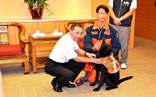 新北搜救犬远赴丹麦比赛 本土培育表现优秀