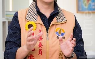 台联党团干事长周倪安。(陈柏州 /大纪元)
