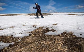 紐約滑雪場11月6日起有限開放