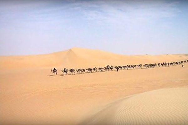 黃沙無垠,古文明何處尋?(視屏擷圖/大紀元)