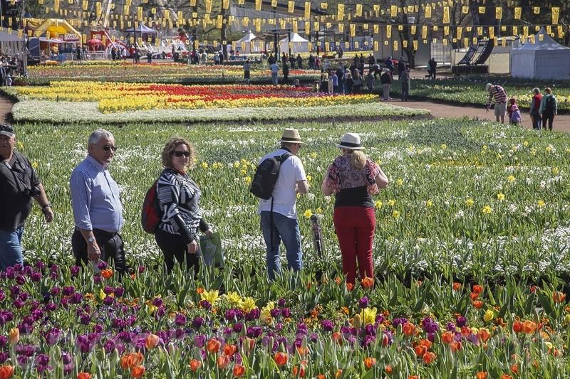 组图:南半球最大的花展(2)