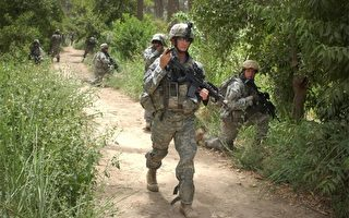 現實版「神盾局」 美軍欲用蜘蛛絲製防彈衣