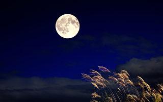 望明月 忆桃源