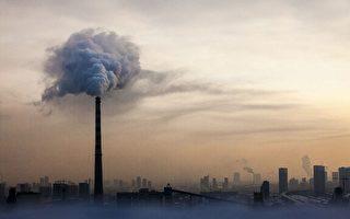 研究:環境太毒 恐有害人類生殖