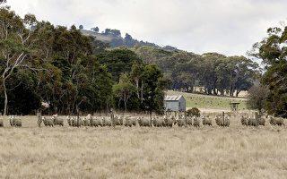大陸財團競購澳洲巨型牧場 驚動澳國防部