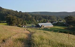 加州少有 占地500畝牧場上市