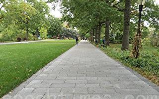 皇后植物園道路重鋪一新