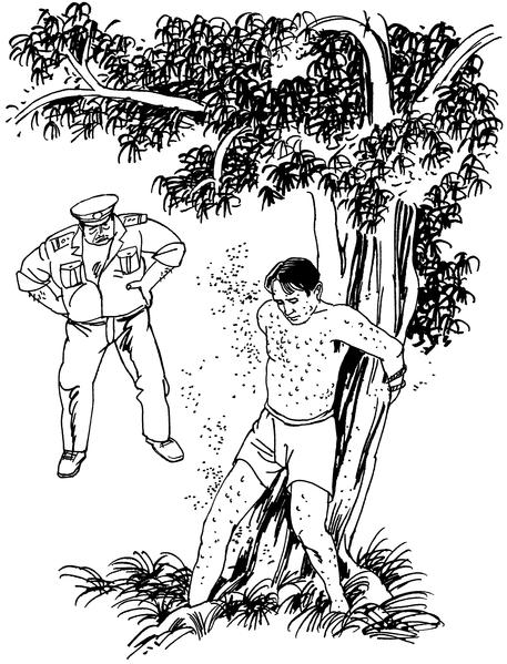 中共酷刑示意圖:餵蚊蟲咬(明慧網)