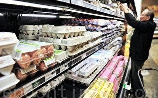 美国蛋价10月下降 曾因禽流感连涨四个月