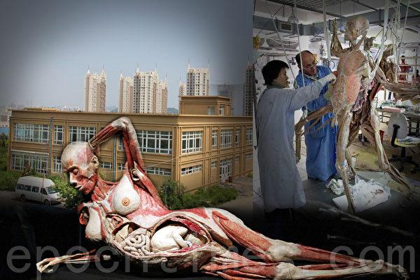 薄熙来亲自批建的大连哈根斯尸体加工厂。(大纪元合成图片)