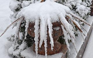 美中西部迎來首場大雪 感恩節出行需小心