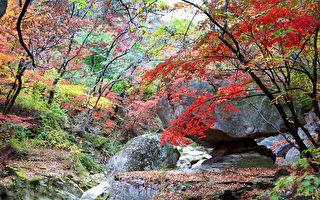 组图:韩国北汉山国立公园 秋景美不胜收