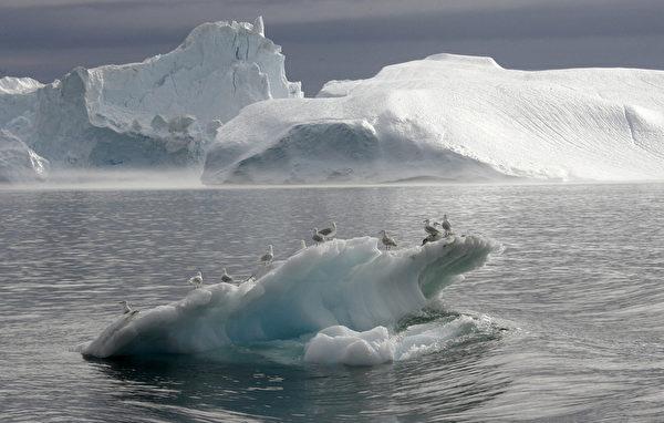 海鷗站在格陵蘭島伊盧利薩特峽灣冰山上。(MICHAEL KAPPELER/AFP/Getty Images)