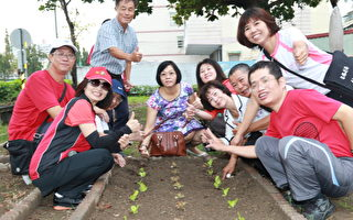 鼓岩農作園區  推廣社區有機蔬菜植栽