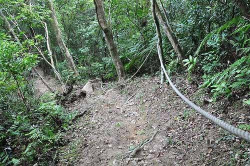 陡峭的下山路。拉著繩索攀降(圖片提供:tony)