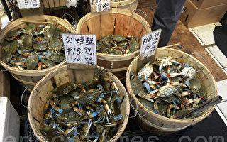 """西岸螃蟹毒素超标 纽约""""温哥华蟹""""涨钱"""