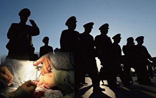 中共軍事化活摘人體器官黑幕