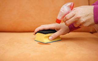 应用绿色配方 深度清洗天然面料沙发