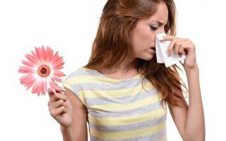 霾害过敏气喘增  冬至三九贴增免疫力