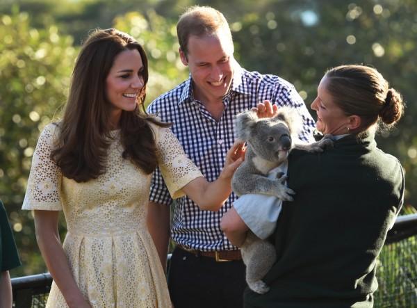 2014年4月20日,凱特王妃(左)和威廉王子(中)參觀悉尼塔朗加動物園。(WILLIAM WEST/AFP)