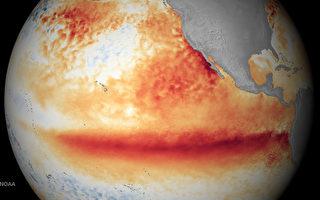 最新卫星图谱:厄尔尼诺无减弱