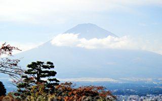 走马观花游日本(之四)