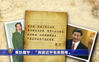 专访罗宇:为何此时促习近平废一党专政